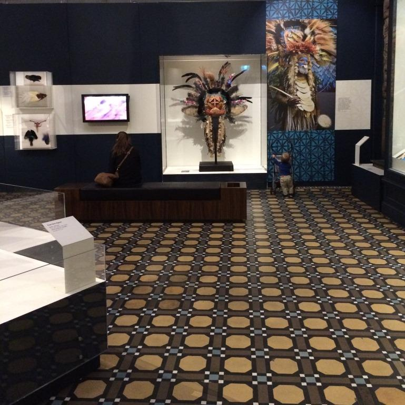 australian museum ex 7