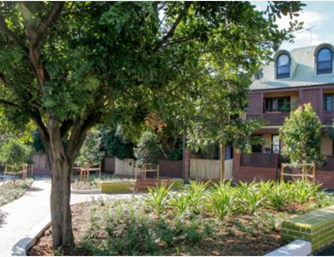 NATURE OASIS IN THE HEART OF GLEBE - Image