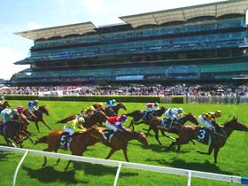Inglis Villiers Stakes Day - Image