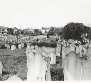 camperdown-cemetery-c1920s-state-library-vic-a09491-320x292