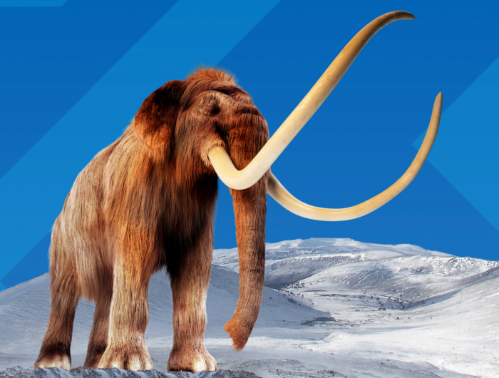 Mammoths: Giants of the Ice Age - Image