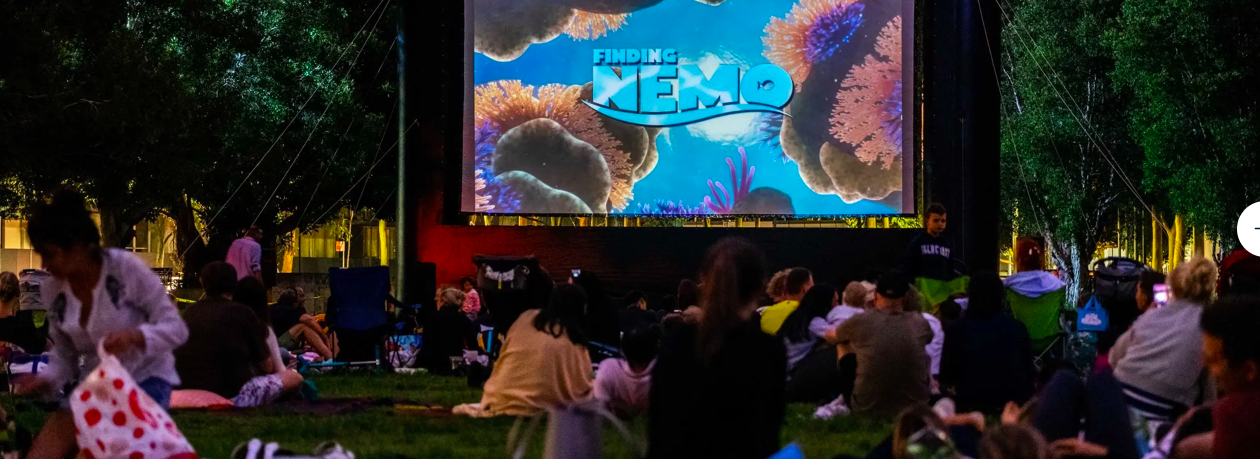 Movies in the Park   - Image